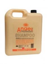 Шампунь для сухих волос Angle 5L