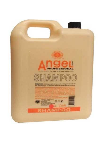 Шампунь для сухих и нормальных волос Angel Professional
