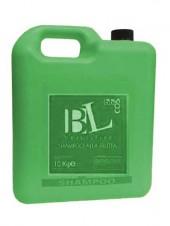 Шампунь с экстрактом мяты BBcos 10L
