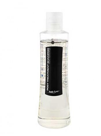 Шампунь зволожуючий з протеїнами кератину Hair Company 500ml