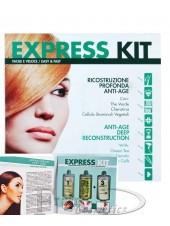 Набор для шокового восстановления волос Ing Professional